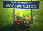 Woolavington Ward Map