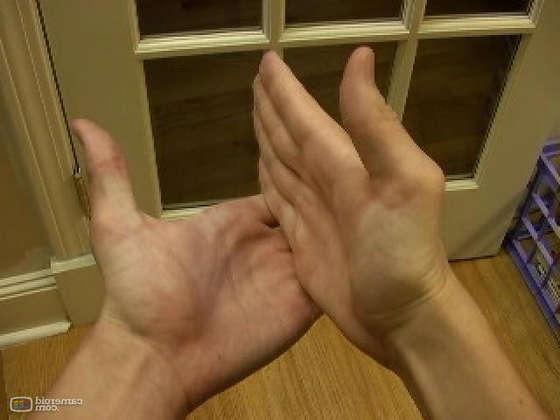 การเป่ามือให้เกิดเสียง hand whistle