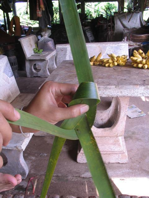 สอนวิธี สานนก สัตว์ ด้วยกระดาษ หลอดกาแฟ как сплести раза птицу из пальмовых листьев листьев кокосовой оставить соломинкой ใบลาน ใบมะพร้าว,วิธีทำ พับ นก สัตว์   ทำนก สัตว์ด้วยกระดาษ หลอดกาแฟ how to weave fold bird from palm leaf coconut leaf leave drinking straw ,how to make diy bird from palm leaf coconut leaf leave drinking straw,how to weave bird animal ,woven bird from paper palm leaf coconut leaf leave palm leaf coconut leaf leave drinking straw ,woven paper palm leaf coconut leaf leave palm leaf coconut leaf leave drinking straw bird animal,how to weave,diy how to palm weaving