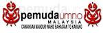 Dekati Sayap Cawangan UMNO Mandur Wahid