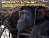 DEFENSOR DE LA IGUALDAD