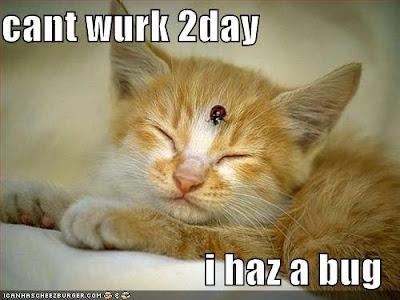 http://4.bp.blogspot.com/_u9iPehKGVY0/Sfjbd-SeEtI/AAAAAAAAAEA/zloEbNe9AKM/s400/Kitty.bmp
