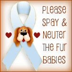 Spay/Neuter Awareness
