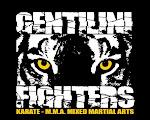 BLOG GENTILINI ARTES MARCIAIS MMA KARATE JIU JITSU K1 MUAY THAI CAPOEIRA