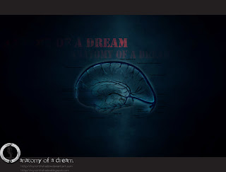 neuroscience anatomy of a dream