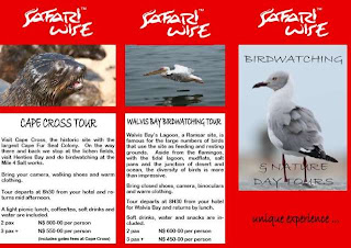 Safari Wise Brochure