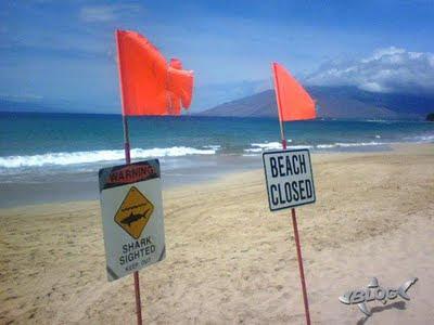 playa Maui cerrada