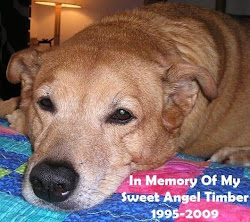 My Angel Timber Blog