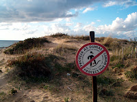 Dunas da praia da Quinta do Lago (Algarve)