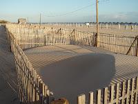 Protecção dunar da praia da Manta Rota (Algarve)