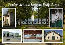 pocztówka z Janowa Podlaskiego