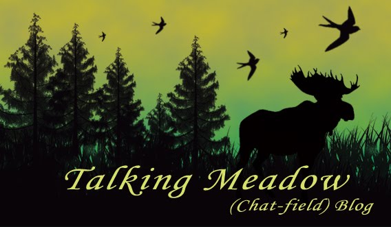 Talking Meadow
