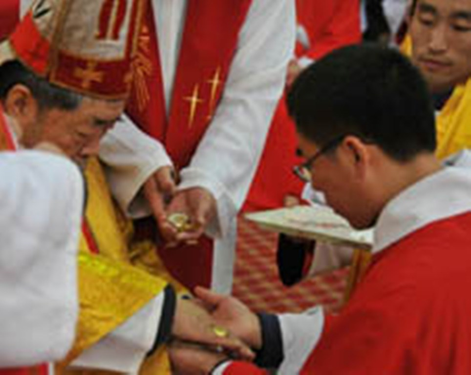how to evangelize among the shan Cardinal paul shan kuo-shi views the landscape.