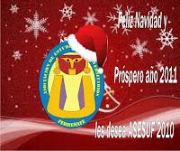 Feliz Navidad y Próspero año 2011
