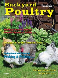the official blog backyard poultry magazine