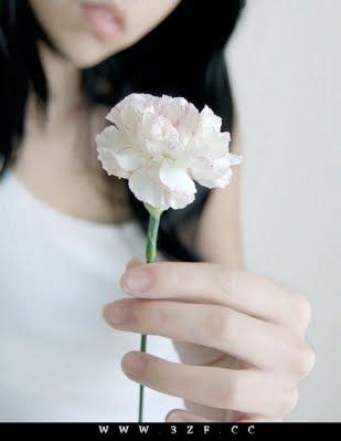 لو كنت تلك الورده البيضاء Graaam-2464cbc32fa