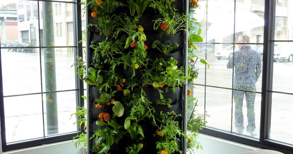Plants On Walls vertical garden systems Aquaponic
