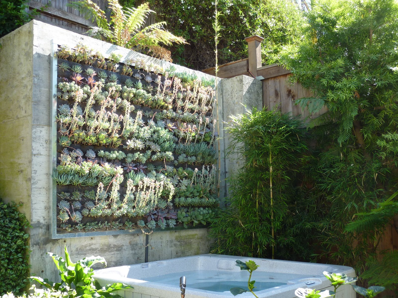 Plants on walls vertical garden systems september 2010 for Vertical garden wall systems