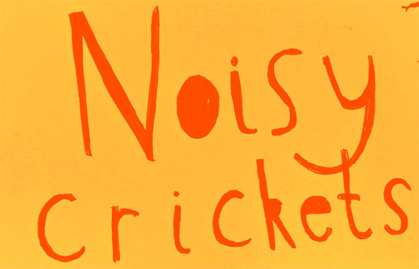 The Noisy Crickets Collective