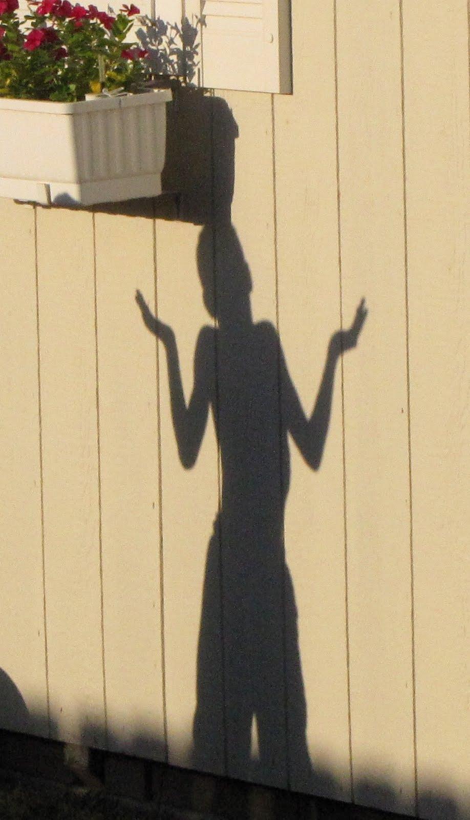 Rocks In The Washer: My Shadow Children