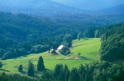 Black Forest Germany Schwarzwald