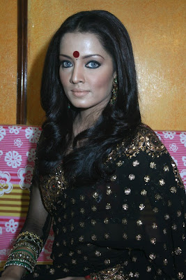 Celina Jaitley in black embroidery saree