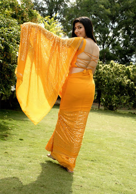 South actress in yellow saree and sexy blouse back design
