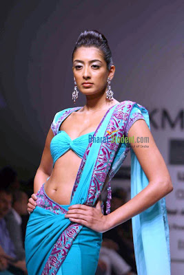 Blue Colour Designer Saree and Sexy Blouse Design
