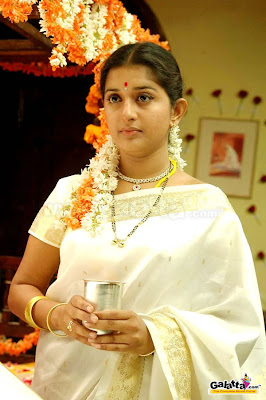 Actress Meera Jasmine in South Indian Silk Saree