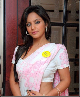 Actress Neetu Chandra in Pink Saree Photo