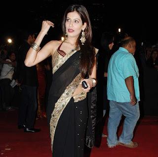 Blouse Back Design of Actress Payal Rohatgi