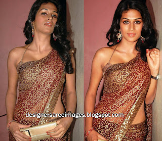 Actress Shraddha Das in Printed Saree paired with Sexy Sleveless Blouse
