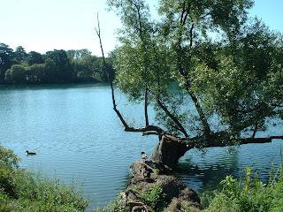 berges du lac