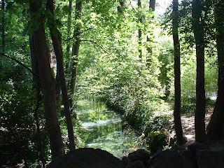 Une rivière s'écoule tranquillement à les bosquets du parc
