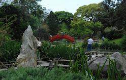 Jardin Japonés 2008