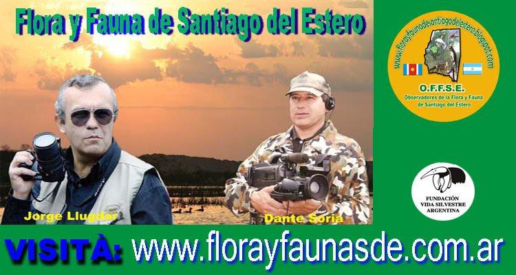 www.florayfaunadesantiagodelestero.blogspot.com