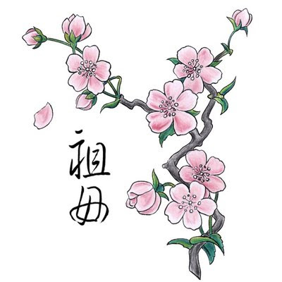 Labels: flower tattoo designs · Cherry blossom Symbolize Beauty And