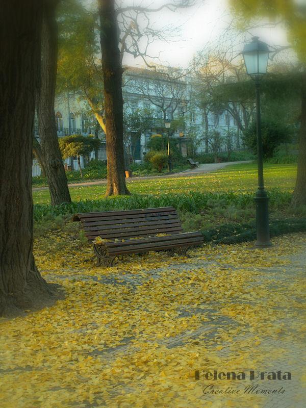 banco de jardim poesia:domingo, 19 de dezembro de 2010