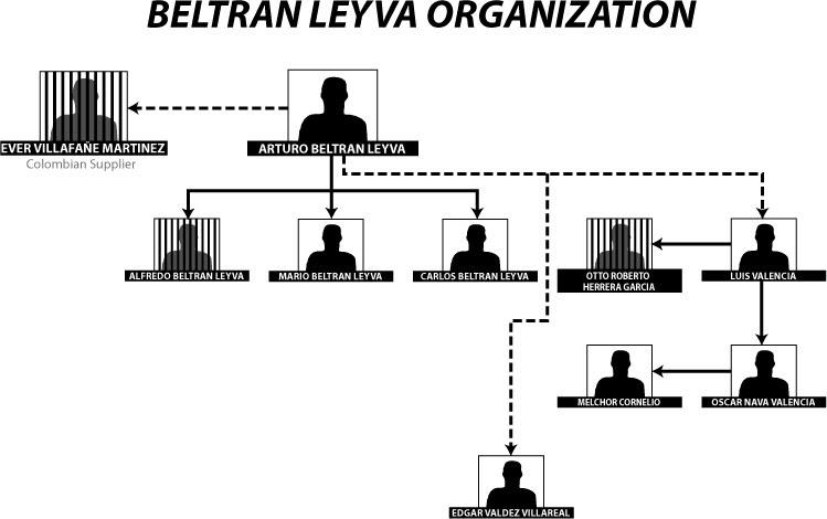 borderland beat  beltran leyva organization