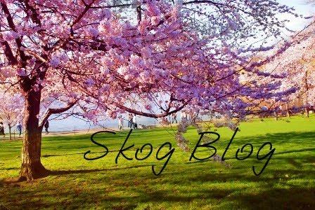 Skog Blog