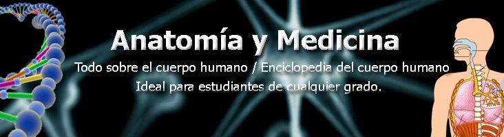Anatomía y Medicina - Todo sobre el cuerpo humano