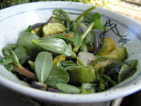Purlsane - Weeds in your Salad!