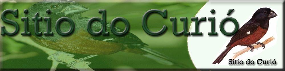 http://wellitoneugenio.blogspot.com/
