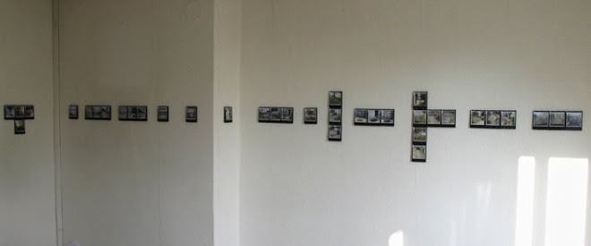 Panorama (Polaroïd.Dominique Cartelier)