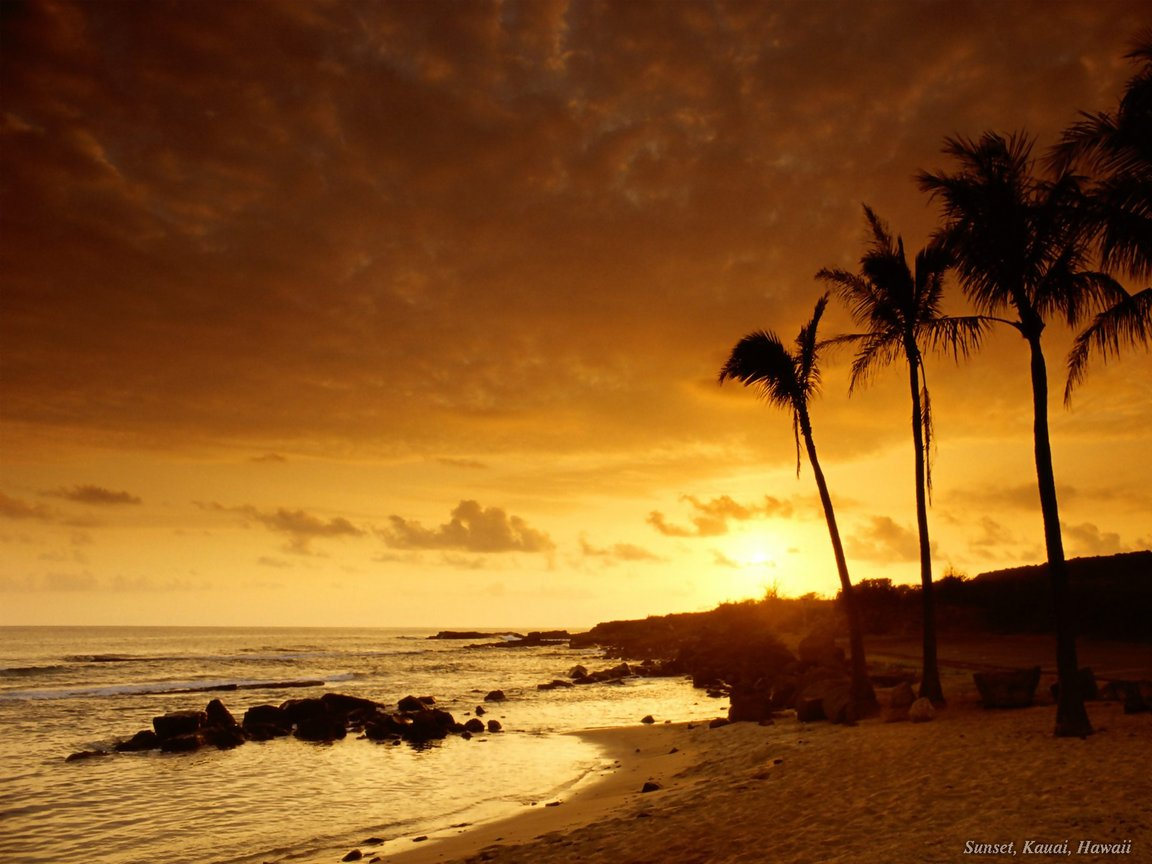 Nature wallpaper beach sunset