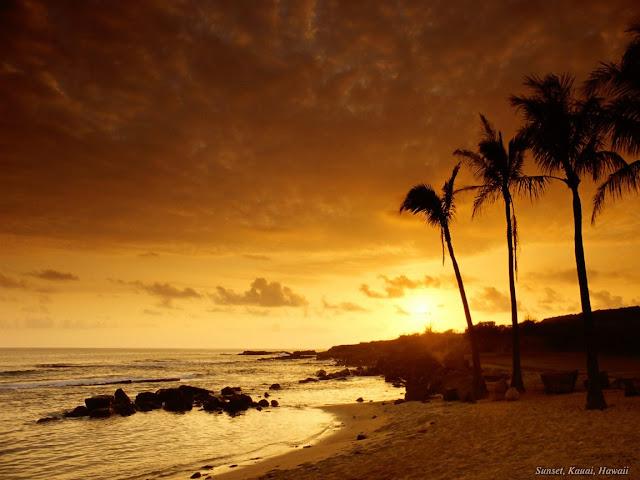 Nature wallpaper beach sunset