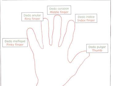 Worksheet. Qu manitas  Sabes cmo se llaman los dedos de la mano
