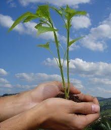 Respeite o meio ambiente