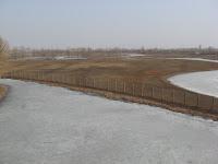 Milu Park wetlands, partly frozen over