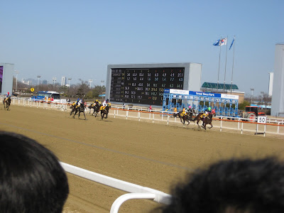 action shot at Seoul Race Park